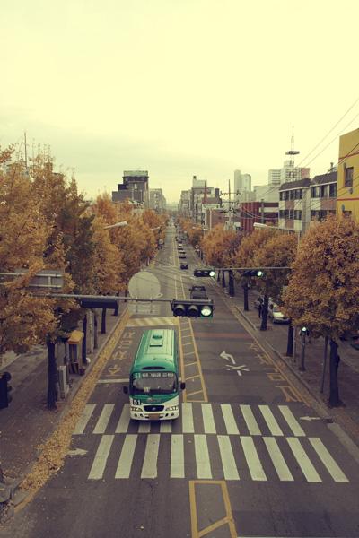 가을이 왔어요