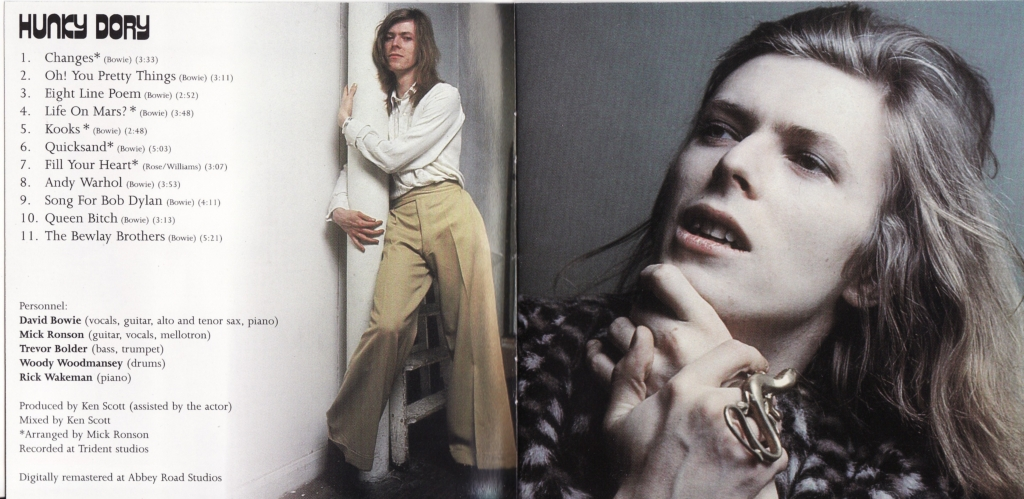 David Bowie - Rock Concert