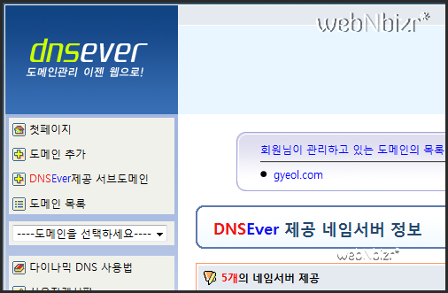 dnsever 1
